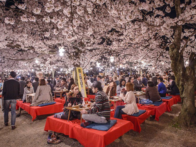 23 Pictures That Show Why Travelers Voted Kyoto The Best City In The World Hanami Japan Japan Travel