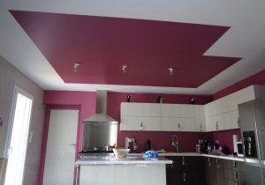 Faux Plafond Chambre Coucher Frais Awesome Decor Placoplatre Ba13 Et ...