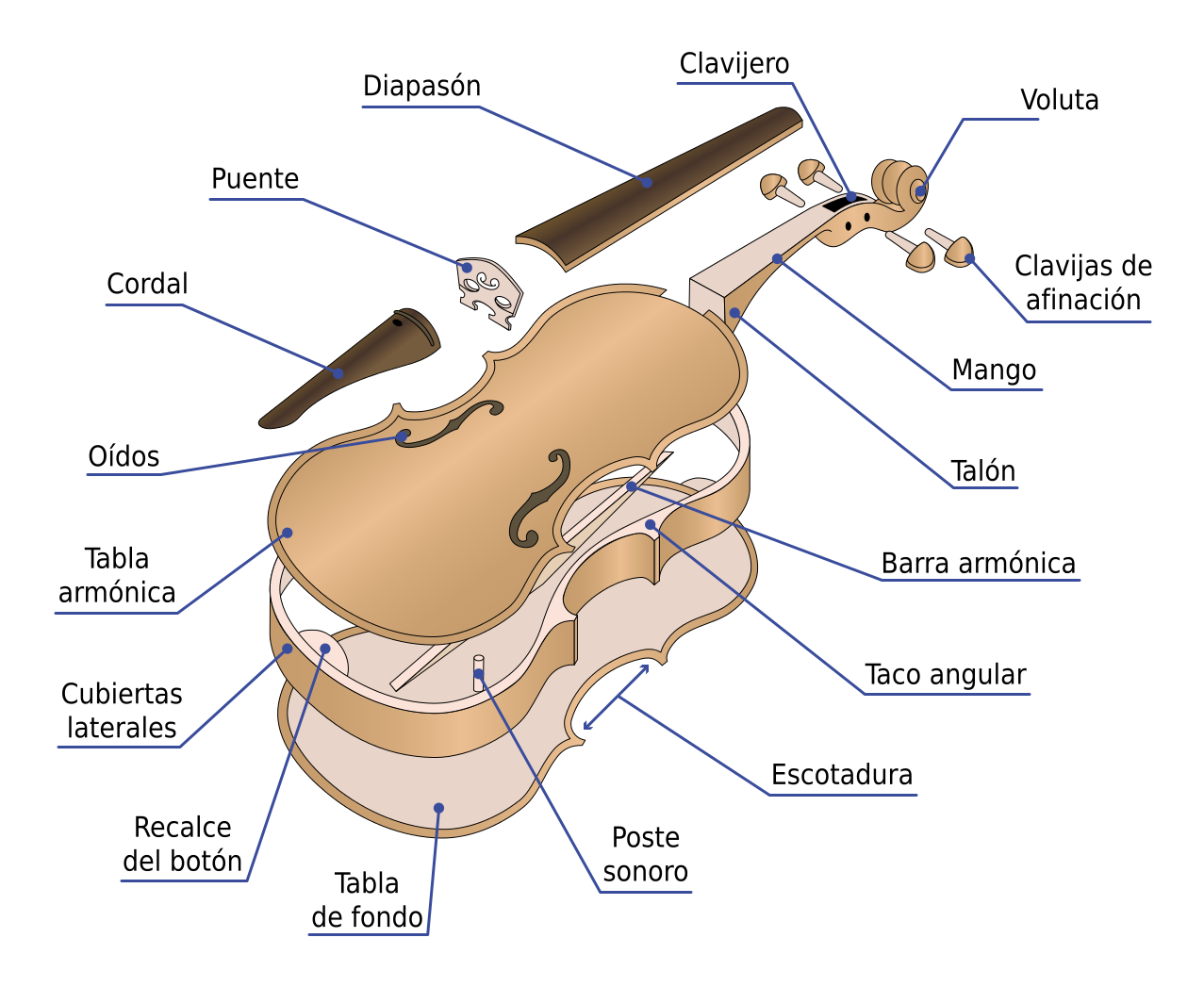 Partes Del Vioin Violines Clases De Violin Fotografia De Violin