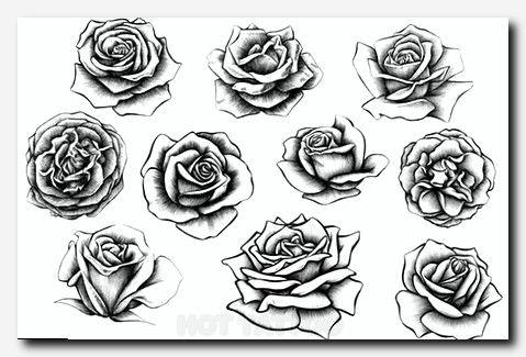 10 Rose Illustrations Hot Tattoo Tattoos Realistic Rose Tattoo Rose Illustration