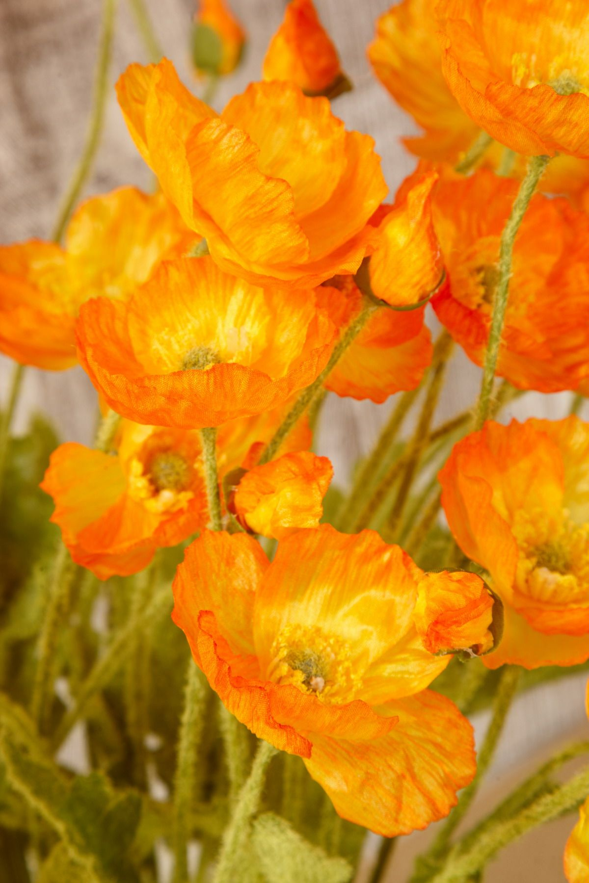 12 Orange Poppy Flowers Silk Flowers Kensley 2015 Pinterest