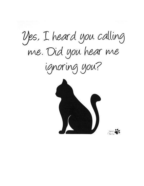 Photo of Impresión del arte del gato, imágenes del gato, humor del gato, impresión del humor del gato, arte de la pared del humor del gato, citas del gato, citas del humor del gato, amante del gato, regalos del amante del gato