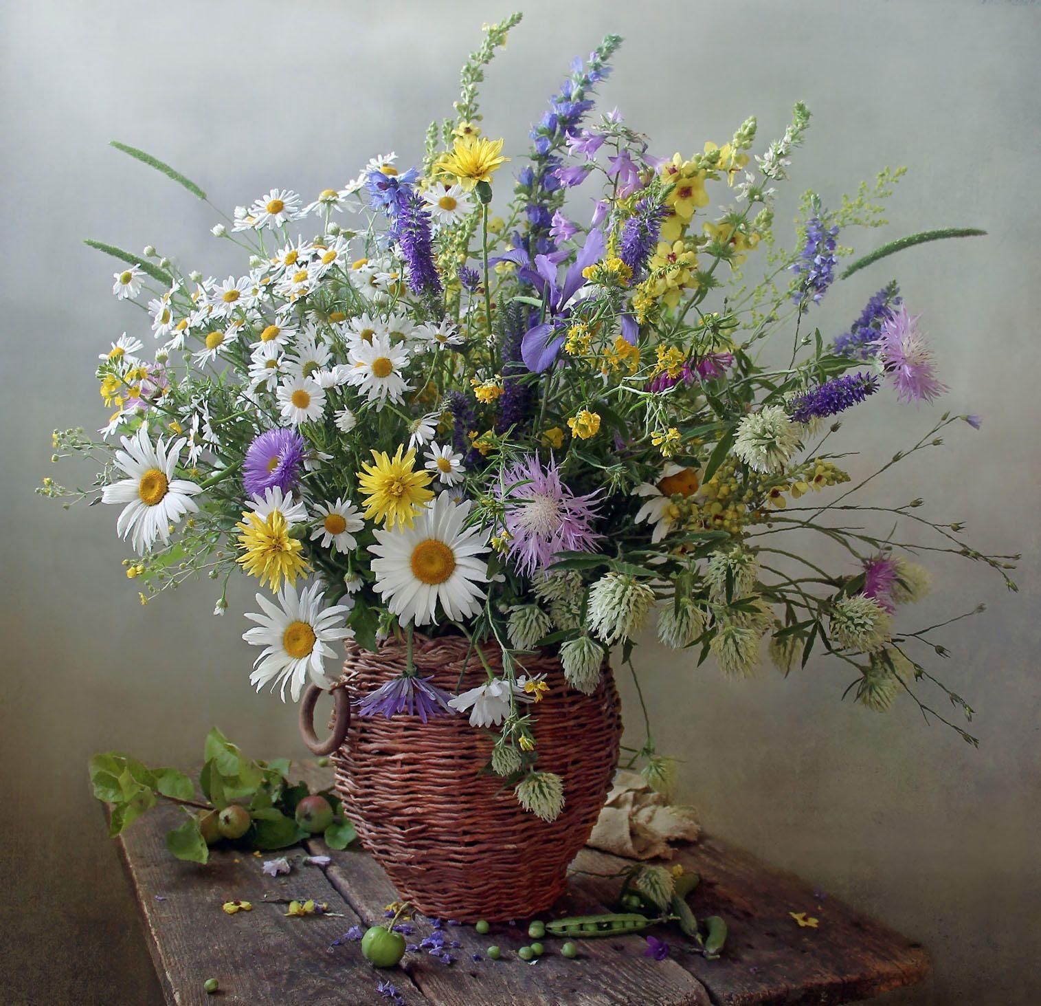 орбакайте, это открытки полевые цветы в букетах фото лучшего
