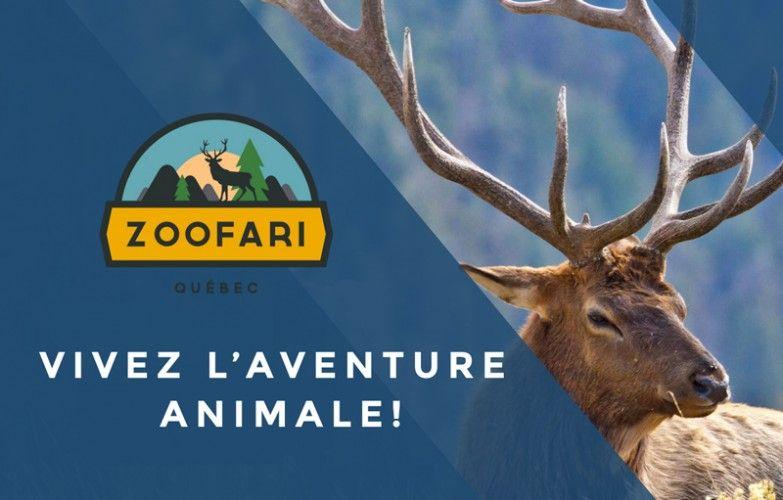 Accueil - Zoofari
