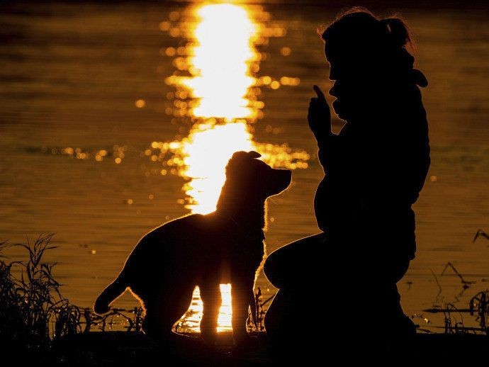 Uma mulher e seu cachorro desfrutam o nascer do sol no Rio Oder, na cidade de Lebus, Alemanha, próximo à fronteira com a Polônia