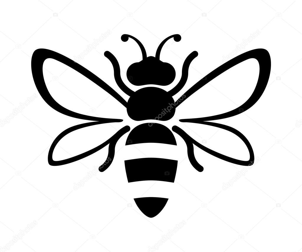 Pin On Art Bee Bee Drawing Honey Bee Drawing Bee Silhouette