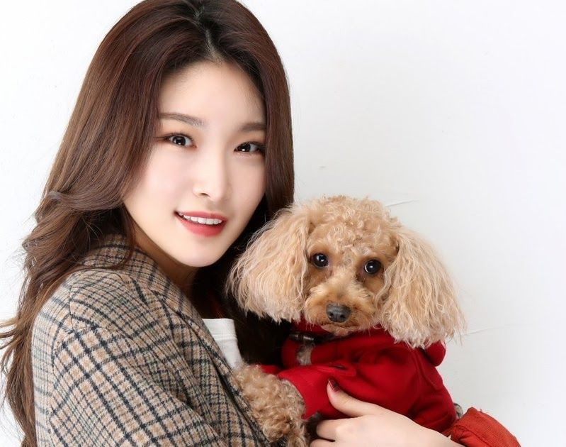 Chungha Poses With Her Pet Dog Bambi Poses Pets Pet Dogs