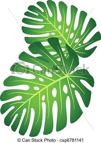 Desenho Folhas Tropicais Pesquisa Google Feuilles De Plantes