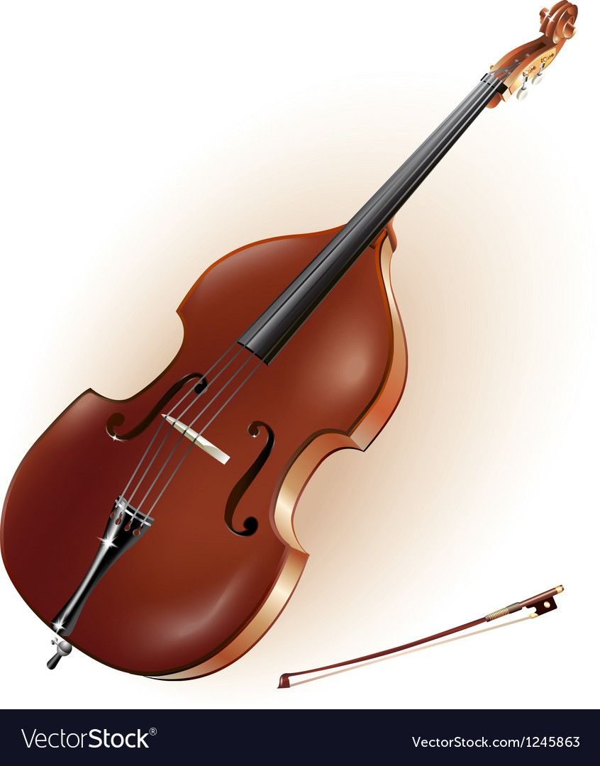 Classical contrabass Royalty Free Vector Image ,