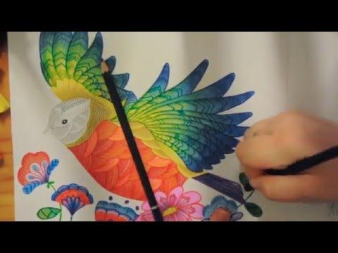 This Is Just A Quick Time Lapse Of Bird I Coloured Form Millie Marottas Animal Kingdom Adult Colouring Book Love And Look Forward To Co