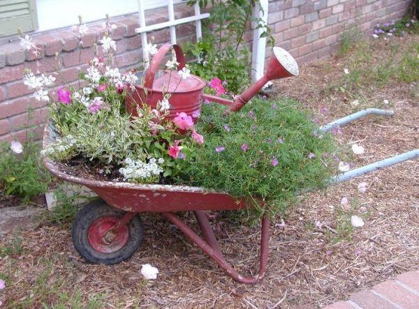 زراعة النباتات في عربة يدوية قديمة