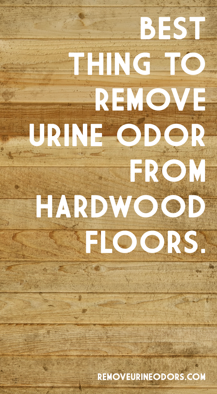 Best Thing To Remove Urine Odor From Hardwood Floors