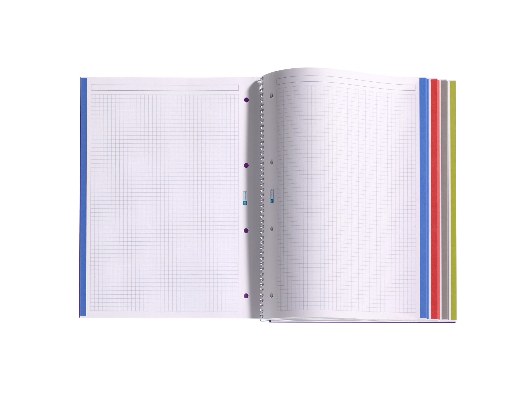 miquelrius notebook  Miquelrius notebook with graph paper // My absolute favorite and ...