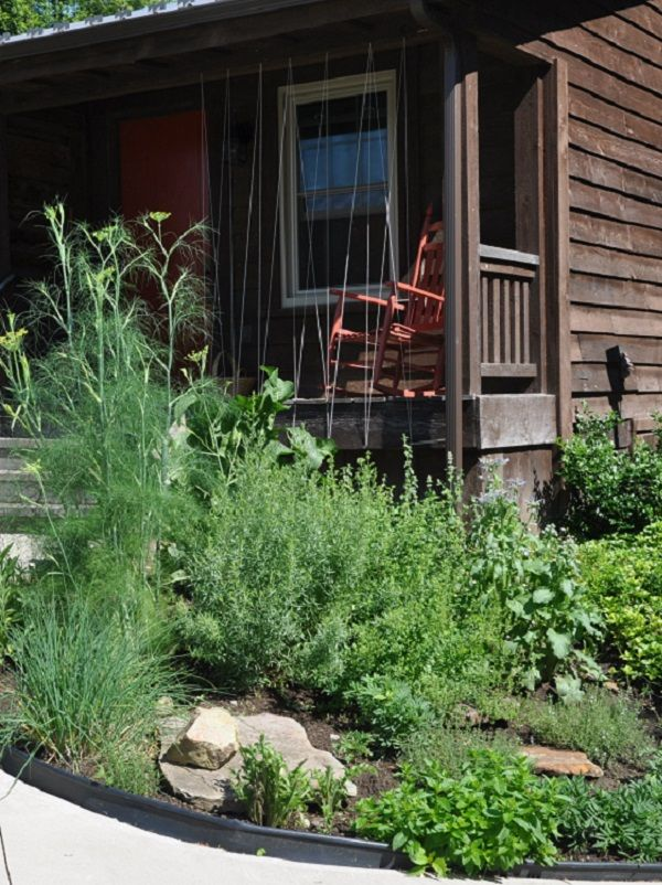 Informal Herb Garden Usefully Placed Close To The House