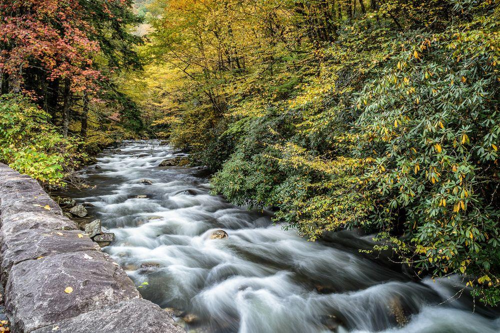 River running through the Smoky Mountains