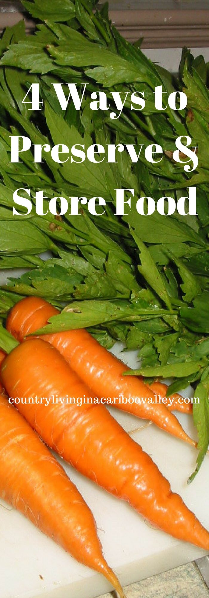Kitchen Garden Preserves Heres How To Preserve And Store All That Garden Harvest Goodness