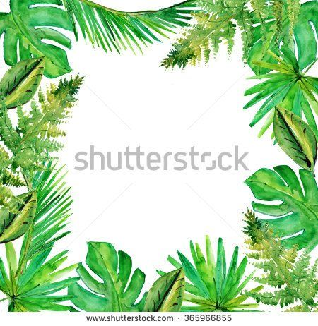 Jungle Border Blank Frame With Rich Tropical Green Plants