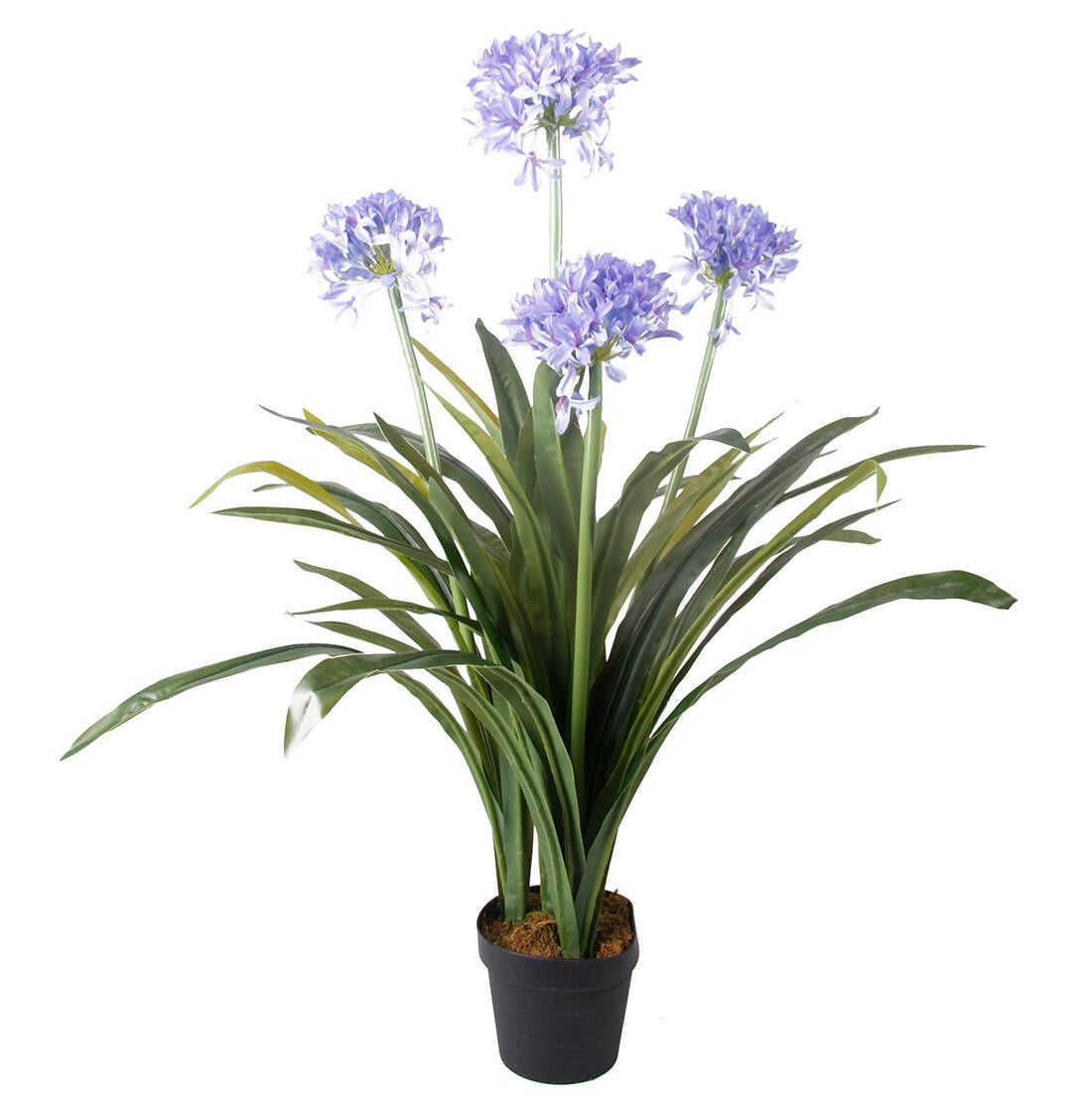 Artificial Agapanthus Artificial Flowers Pinterest African