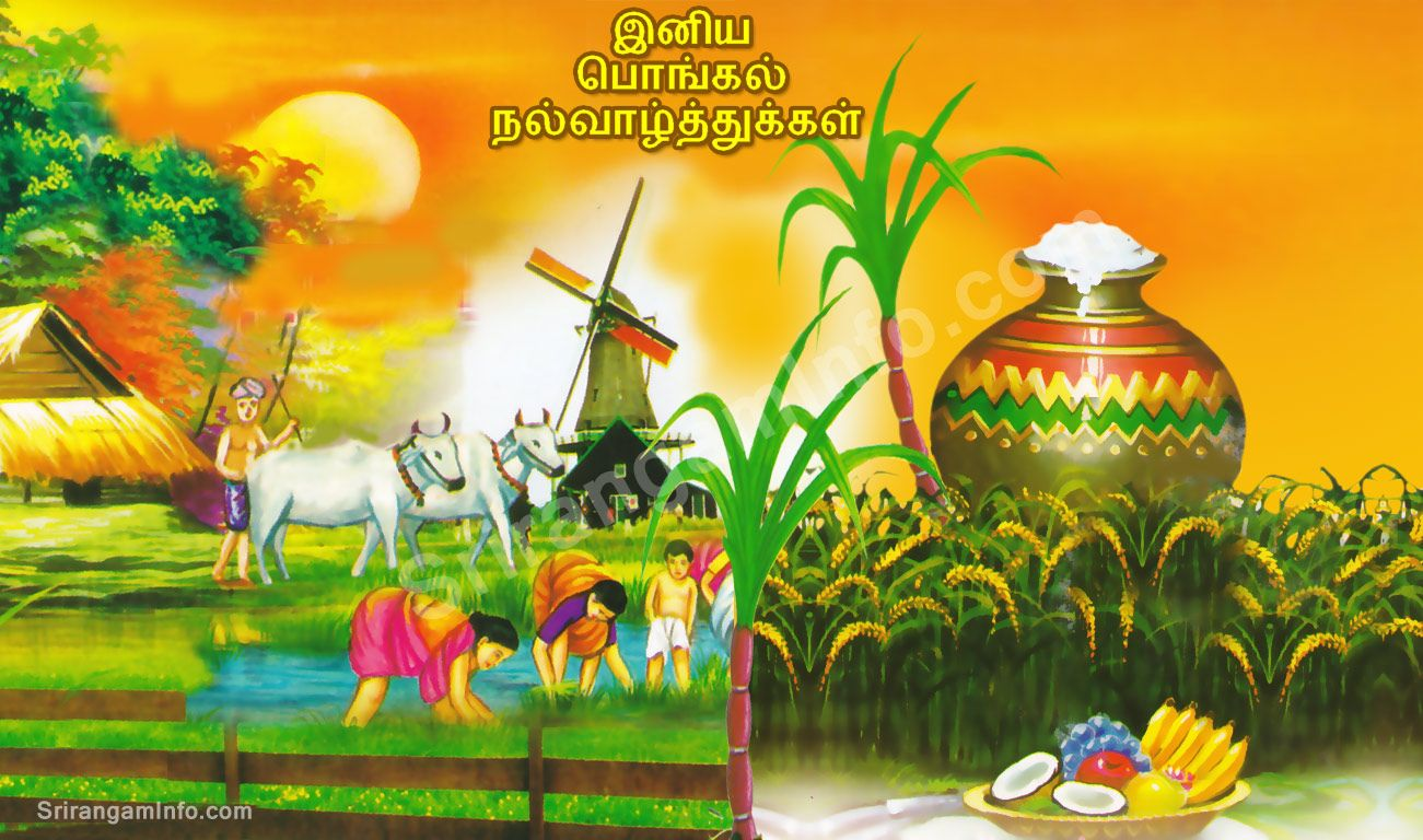 Pongal Wishes Images Free Download