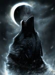 animal pics wolf howling drawingwolf howling at moonhowling