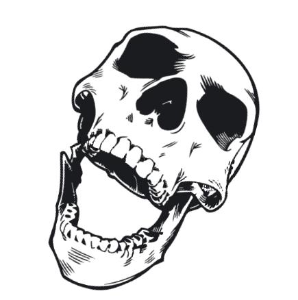Http Www E Membrance Com Blog Wp Content Uploads 2012 02 Laughing Skull Png Screaming Skull Skull Art Skull