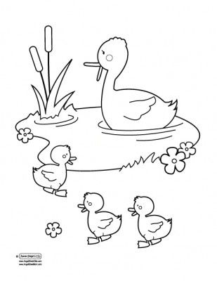 Duck Pond Coloring Page Coloring Pages