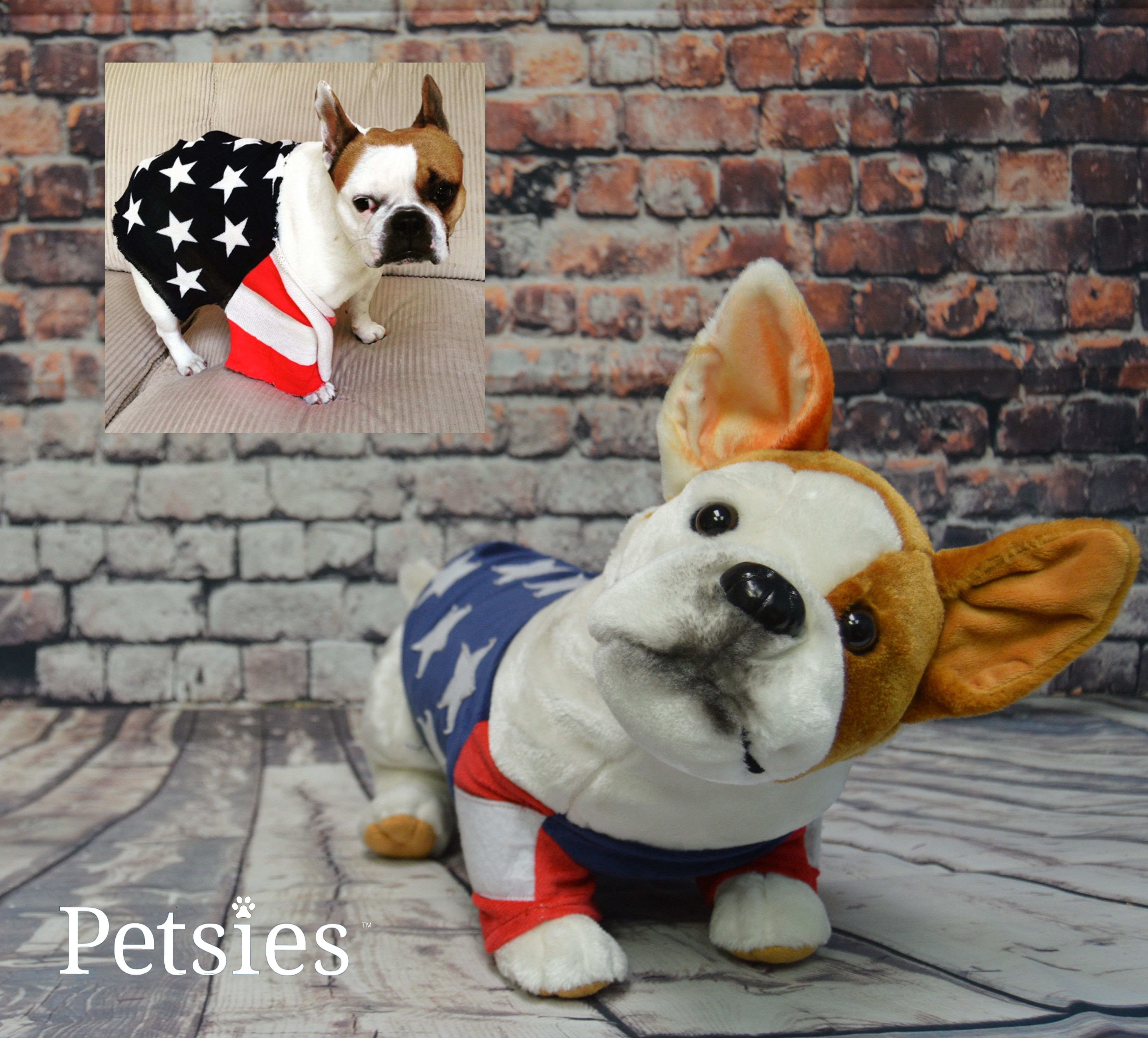 ee8e33ad3c14 Check out Petsies - they make a custom plush lookalike of your pet! Create your  own patriotic pup! budsies.com