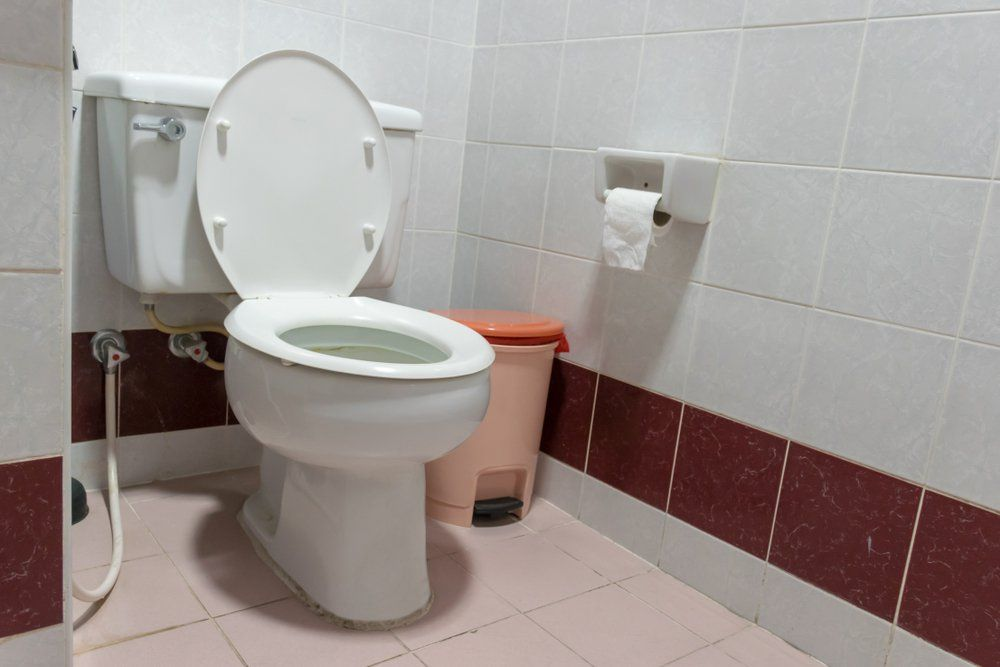 Always Close The Toilet Lid When You Flush Here S Why With