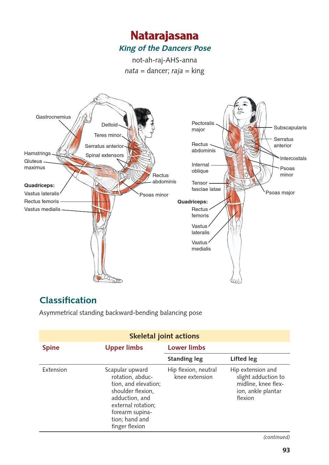 Fein Leslie Kaminoff Yoga Anatomie Fotos - Anatomie Ideen - finotti.info