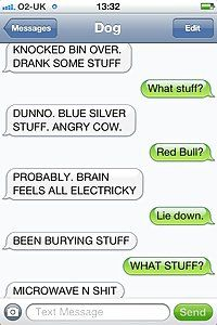 Drank some stuff | iPhone Text Messages With a Dog