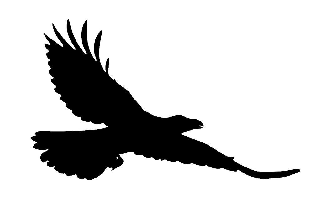 black silhouette raven google s k ravens pinterest black rh pinterest com