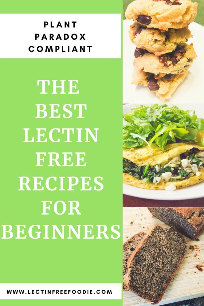 Photo of Starting a Lectin Free Diet? A Collection of Recipes to Get You Started