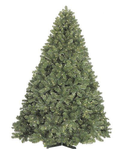 Christmas At Winterland Wl Trnat 06 Lww Warm White Pre Lit Christmas Trees 6 Foot Natural Tall Christmas Trees Pre Lit Christmas Tree Artificial Christmas Tree