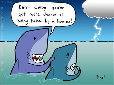 We 39 Ve Done A Lot Of Articles Here On Aquaviews About Sharks And Shark Attacks From Serious Ones Like The Cruel Truth Ab Sharks Funny Shark Pictures Shark