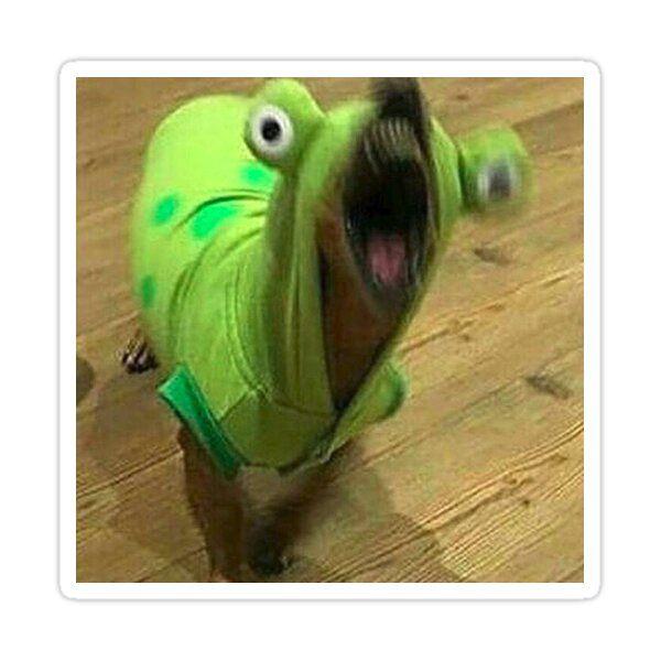 Borking Frog Sticker by kitchenstove69