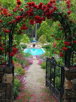 Beautiful Garden With An Arbor Of Red Climbing Roses And A Pool