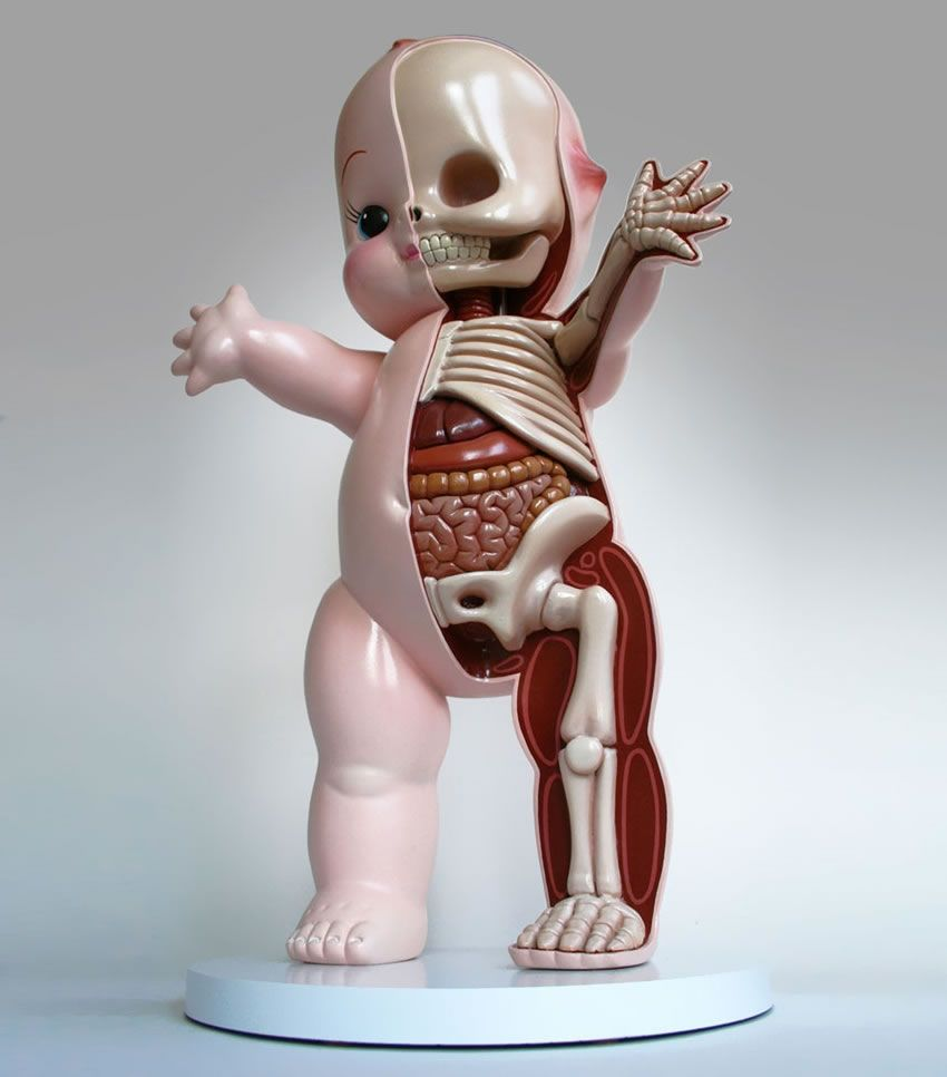 Funny, creepy and unusual dissected toy sculptures by Jason Freeny ...