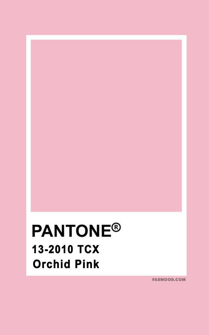 pantone color , pantone color 2020, pantone color chart , pantone color of the year, pantone color chart 2019, pantone color names, pantone color chart 2020, pantone pink, pantone orchid pink #pantone #color