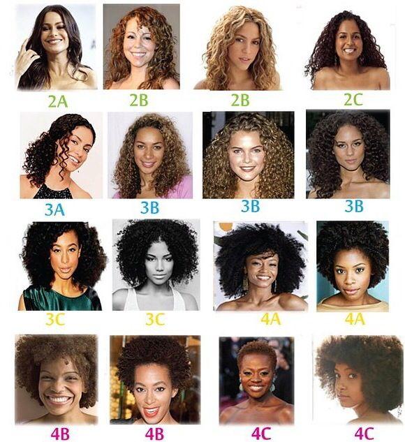 Hair Types Curly Hair Types Hair Type Hair Type Chart