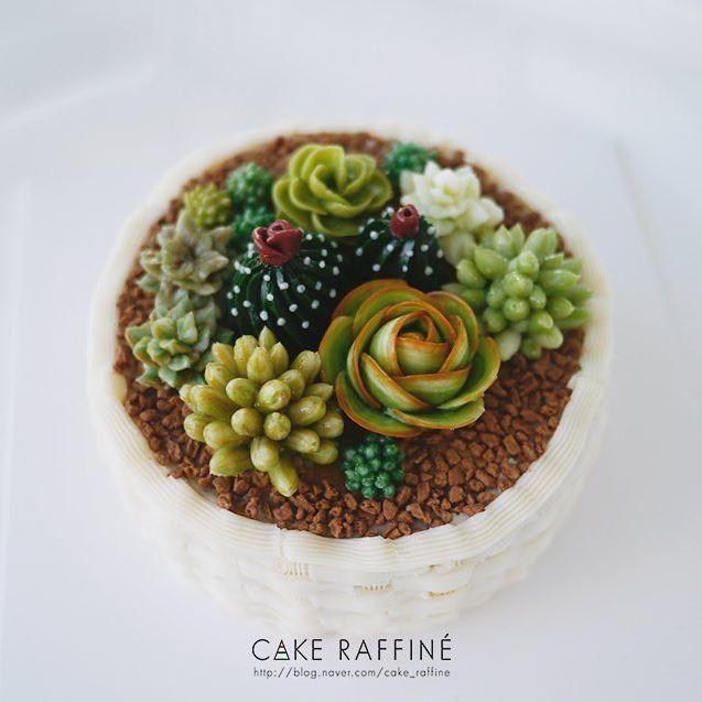 정규과정 4주차 다육이 케이크입니다. 귀여운 다육이와 고난도 바구니짜기까지 거뜬히 해내신 수강생님 직품입니다.  A succulent cake in a basket. Student's work. #Buttercreamflowercake#flowercake#플라워케이크#버터크림플라워케이크#인천버터크림플라워케이크#웨딩케이크#다육이케이크#koreabuttercream#weddingcake#koreanflowercake#kue#bakingclass#cakedecorating#송도버터크림플라워케이크#foodporn#buttercreamcake#wilton#birthdaycakes#다육이#베이킹클래스#cupcakes#succulent#환갑케이크#buttercream#flowercake#daily#baking#생일케이크#Bungakue#เค้ก#鲜花蛋糕