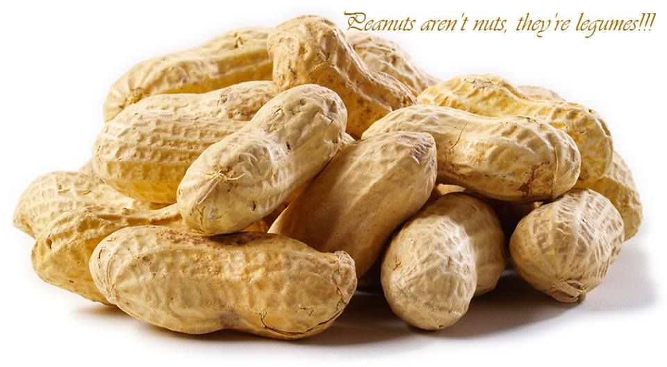 Did You Know Peanuts Aren T Nuts They Re Legumes Food