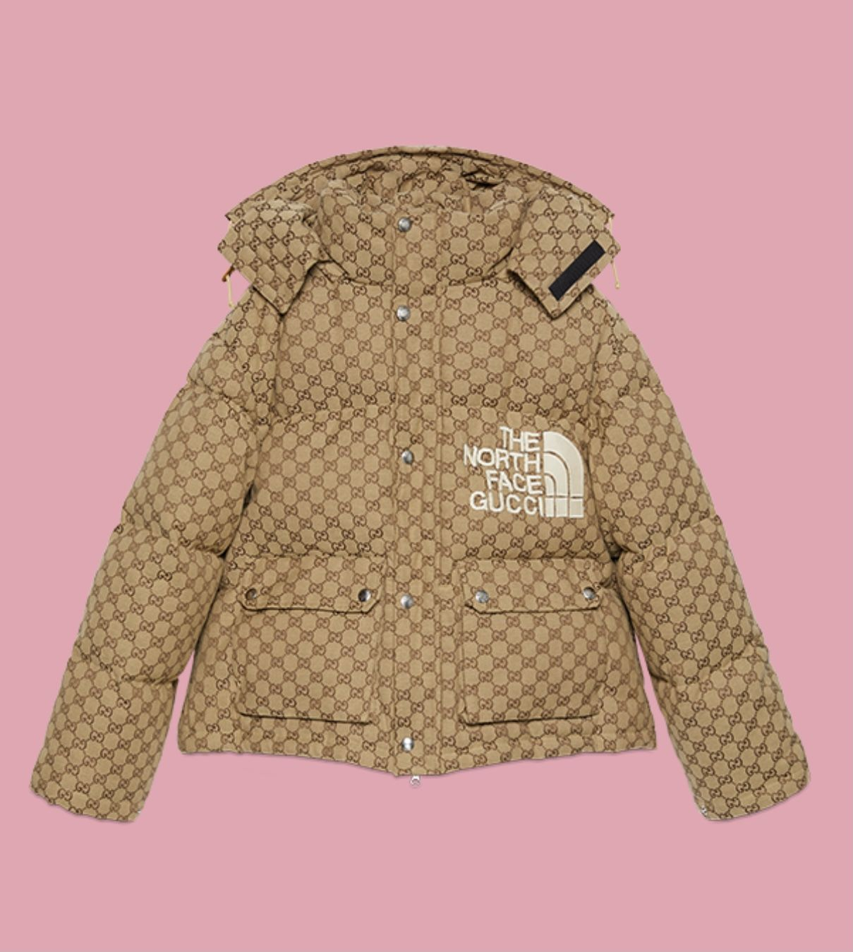 Gucci North Face Puffer In 2021 North Face Puffer Jacket North Face Puffer The North Face [ 1349 x 1209 Pixel ]