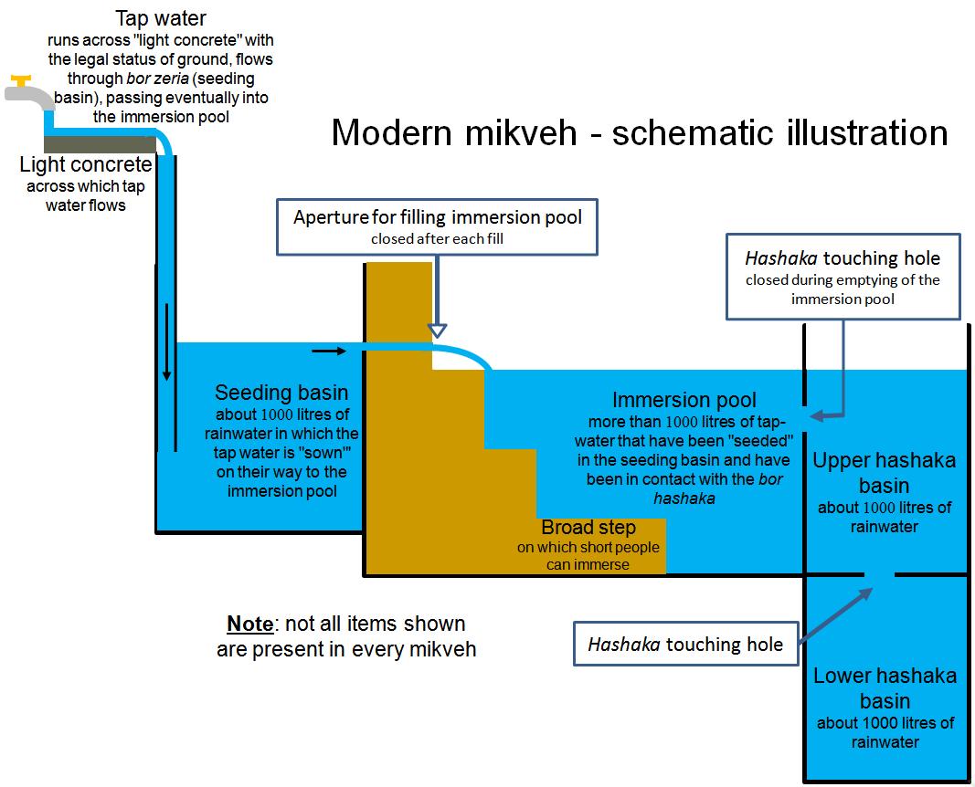 Diagram of a Mikvah ritual bath MODERN #JewishArchitecture | Mikvah ...