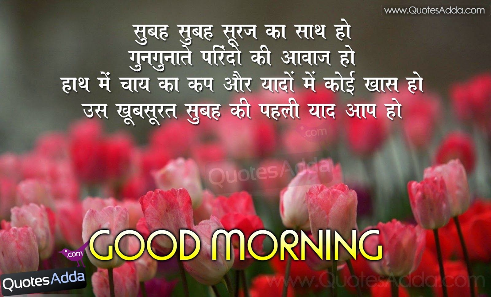 Good Morning Best Images With Quotes In Hindi