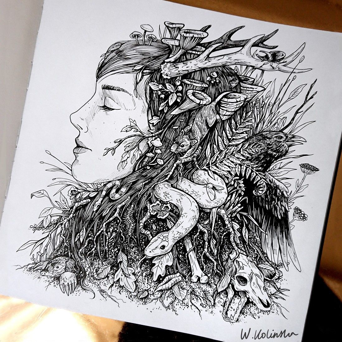 mother nature drawing by w  kolinska
