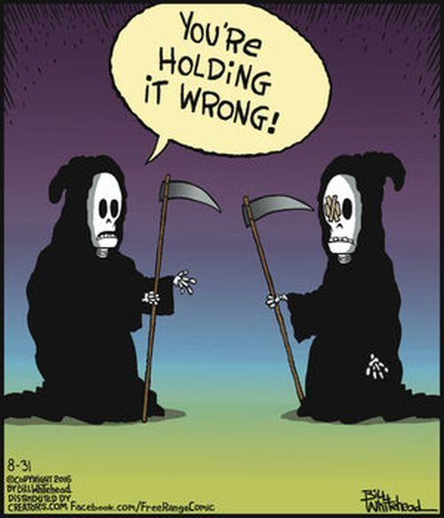 Grim Reepers With Images Halloween Memes Halloween Jokes