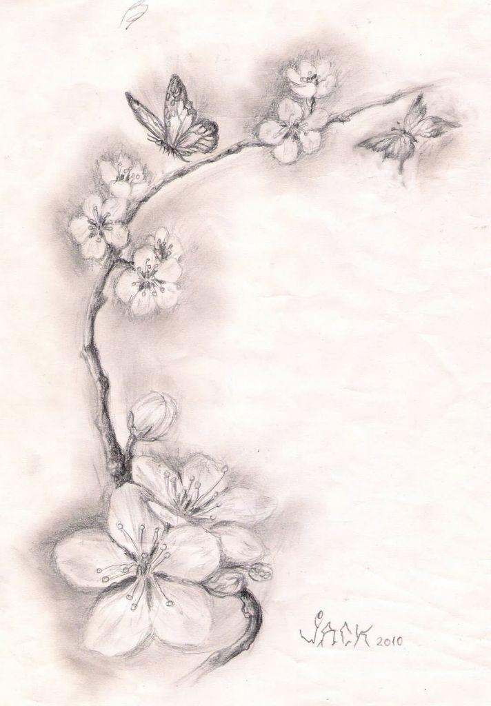 Black And White Cherry Blossom Tattoos 5 New Cherry Blossom Tattoo Designs Cherry Blossom Tattoo Blossom Tattoo Cherry Tattoos