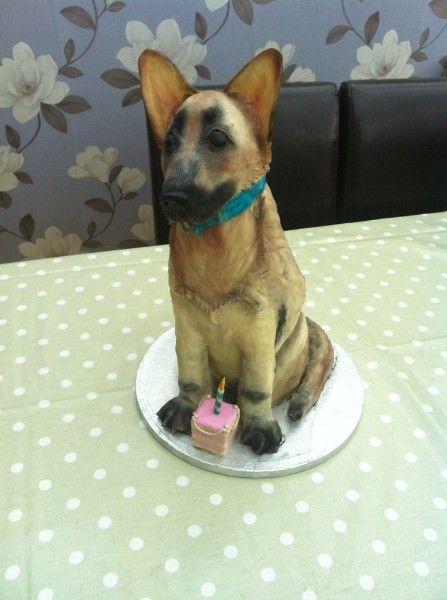 Dog Cake Alsation Cake Dog Lovers Cakes Pinterest Torten Und