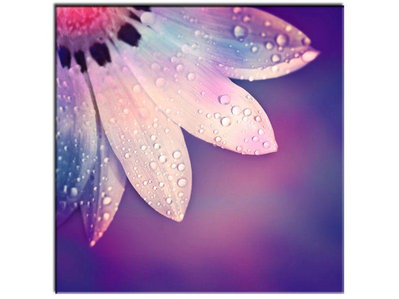 Nouveau Tableau moderne Fleur >> http://www.hexoa.fr/tableau-fleurs ...