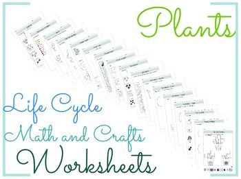 plants life cycle math and crafts worksheets bgs my products life cycles worksheets. Black Bedroom Furniture Sets. Home Design Ideas